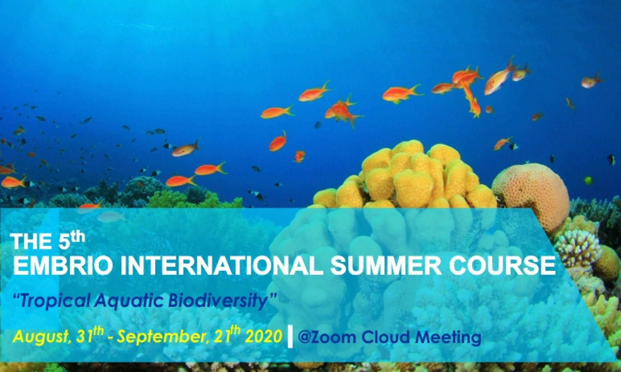 EMBRIO International Summer Course (EISC) 2020